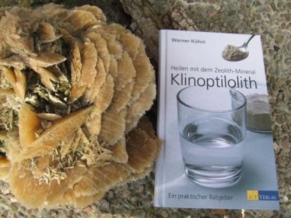 Buch Heilen mit dem Zeolith-Mineral Klinoptilolith